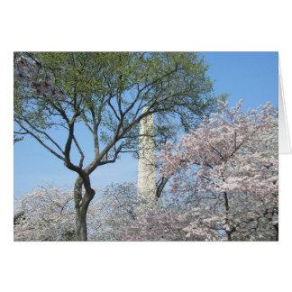 Kirschblüten und das Washington-Monument in DC Karte
