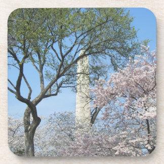 Kirschblüten und das Washington-Monument in DC Untersetzer