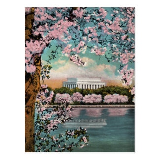 Kirschblüten-Vintage Postkarte