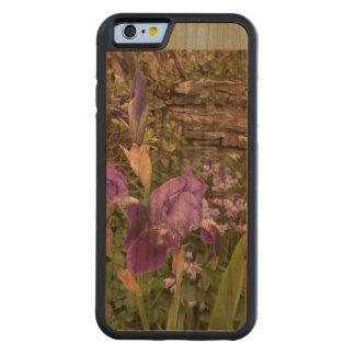 Kirschehölzerner iphone Fall. Blumen-Foto Bumper iPhone 6 Hülle Kirsche
