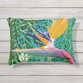 Kissen im Freien, Paradiesvogel Entwurf