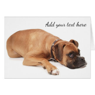 Kitz-Boxer-Hundestillstehen Karte