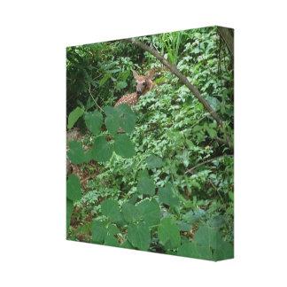 KITZ im grünen Herz-Blätter --- Leinwanddruck