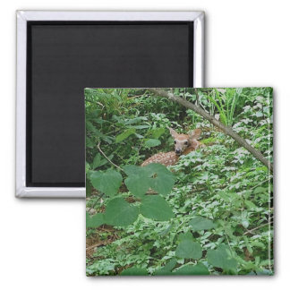 KITZ im grünen Herz-Blätter --- Quadratischer Magnet