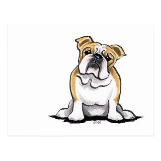 Kitz-weiße Bulldogge sitzen hübsches Postkarte