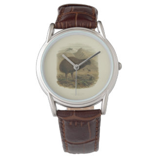 Kiwi-Uhr Uhr