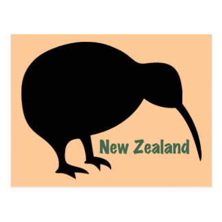 Kiwi-Vogel - Neuseeland Postkarte