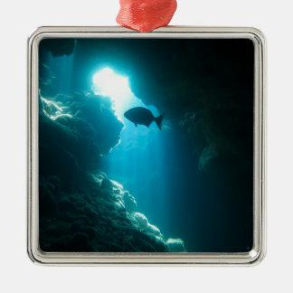 Klare blaue Höhle und Fische Quadratisches Silberfarbenes Ornament