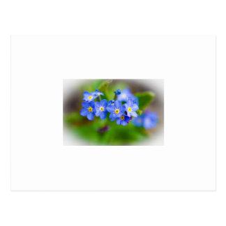 Kleine blaue Blumen-Postkarte Postkarte