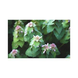 Kleine Blumen Leinwanddruck