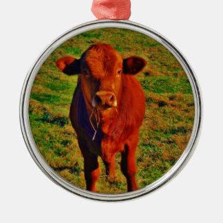 Kleine Brown-Kuh-hellgrünes Gras Rundes Silberfarbenes Ornament