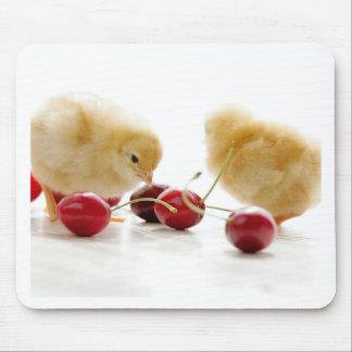 Kleine Küken und frische Kirschen Mauspad