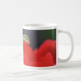 Kleine Raupe Kaffeetasse