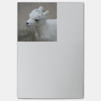 kleine Ziege Post-it Klebezettel