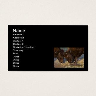 Kleiner Lehrer Visitenkarte