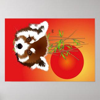 Kleiner Panda (Ailurus fulgens) Poster