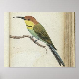 Kleiner Vogel auf Niederlassung, Jan. Brandes, Poster