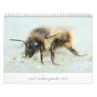 Kleiner Wunder-Kalender 2013 Abreißkalender