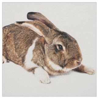 Kleines braunes Kaninchen Stoff