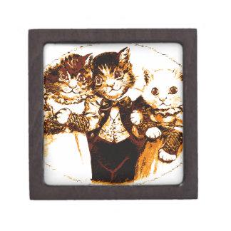 Kleines Stück drei Katzen Schmuckkiste