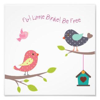 Kleines Vogelplakat für Babys und Mädchen Fotodruck