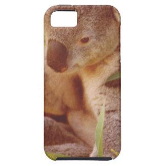 Koala-Bärn-Liebe Schutzhülle Fürs iPhone 5