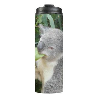 Koala, der Gummi-Blatt isst Thermosbecher