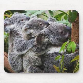 Koala drei in einem Baum Mauspad