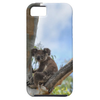 KOALA IM BAUM QUEENSLAND AUSTRALIEN ETUI FÜRS iPhone 5