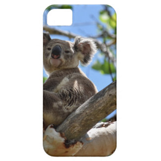 KOALA IM BAUM QUEENSLAND AUSTRALIEN iPhone 5 ETUIS