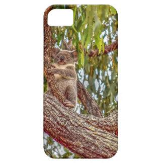 KOALA IN DEN BAUM-AUSTRALIEN-KUNST-EFFEKTEN iPhone 5 CASE