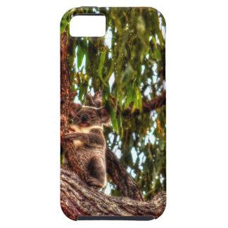 KOALA IN DEN BAUM-AUSTRALIEN-KUNST-EFFEKTEN iPhone 5 ETUI