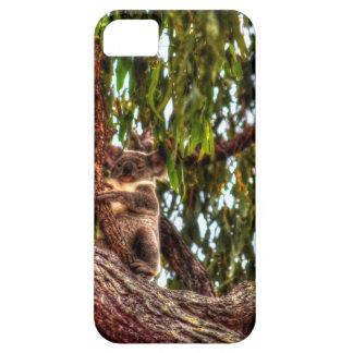 KOALA IN DEN BAUM-AUSTRALIEN-KUNST-EFFEKTEN SCHUTZHÜLLE FÜRS iPhone 5