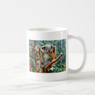 Koala Kaffeetasse