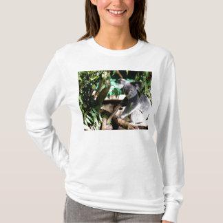 Koala unter dem Gumleaves T-Shirt