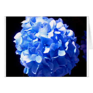 Kobalt-BlauHydrangea Karte