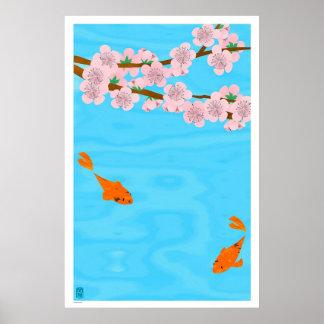 Koi und Kirschblüte Poster