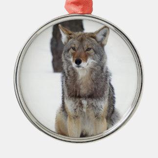 Kojote, der im Schnee sitzt Rundes Silberfarbenes Ornament