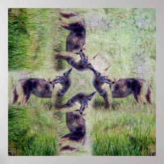 Kojote-Geist Poster