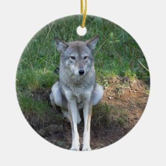Kojote-Sammlung Rundes Keramik Ornament