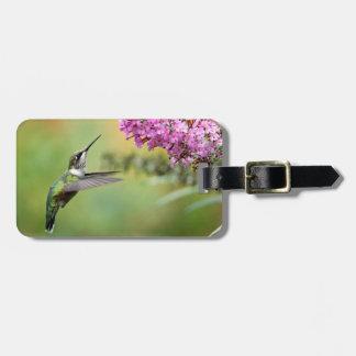 Kolibri 5053 kofferanhänger
