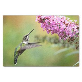 Kolibri 5053 seidenpapier