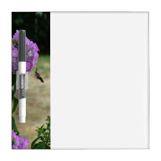 Kolibri-Anschlagbrett Memo Boards