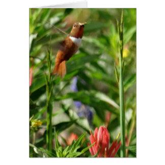 Kolibri-Blumen Karte