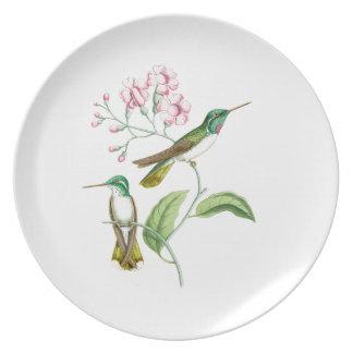 Kolibri-Blumen-Vogel-Tier-Tiere mit Blumen Essteller