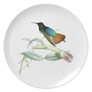 Kolibri-Blumen-Vogel-Tier-Tiere mit Blumen Teller