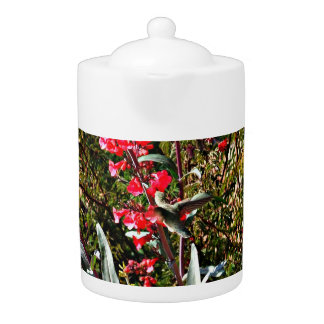 Kolibri im roten Baum blüht Tee-Topf