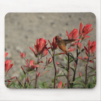 Kolibri-Kardinals-Blumen Mousepad