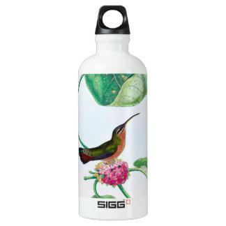 Kolibri-Liebe-Vögel Wasserflasche