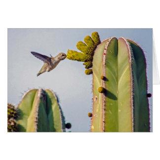 Kolibri und Kaktus Notecard Karte